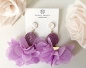 The Lavender and Fiber Di...