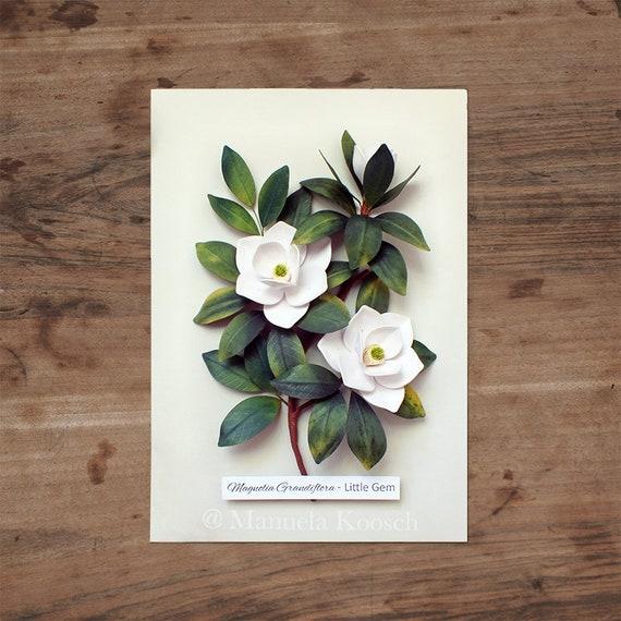 White magnolia flowers botanical illustration wall art white etsy image 0 mightylinksfo