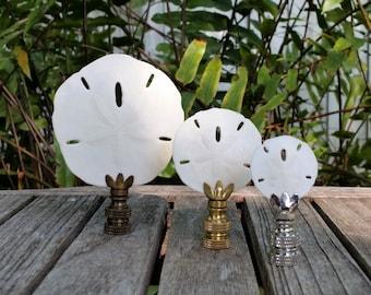 Sand Dollar Lamp Finial, Various Sizes