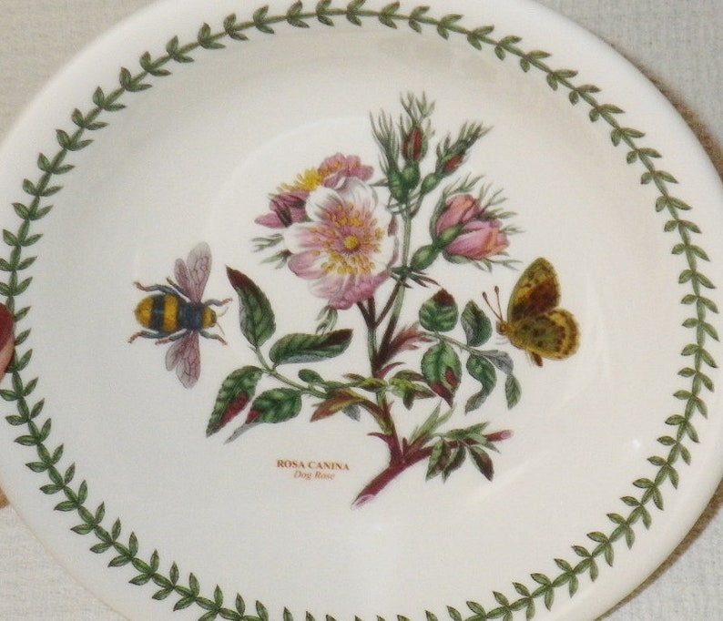Minton Dainty Sprays  Made in England Rim Soup Bowl Multiples Available
