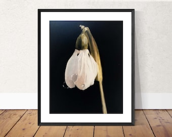 Snowdrop painting Snowdrop Art PRINT Flower Painting Snowdrop Art Print  - from original painting by J Coates