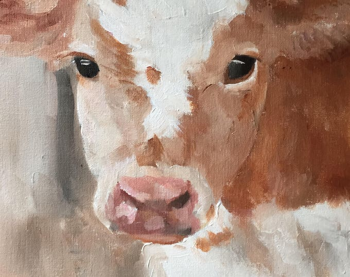 Cow Painting -Cow art - Cow Print - Fine Art - from original oil painting by James Coates