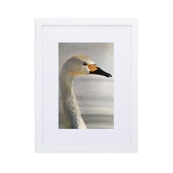 Swan Art Print Framed Matte Paper Framed Poster With Mat