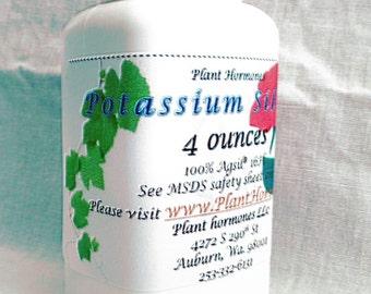 Potassium Silicate 99% Powder 4 ounces