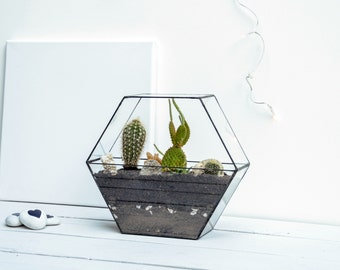 New Honeycomb Glass Terrarium - XL large Geometric Planter - Stained Glass Terrarium