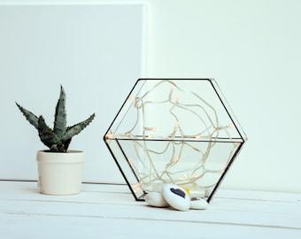 New Honeycomb Glass Terrarium - Medium Geometric Planter - Stained Glass Terrarium