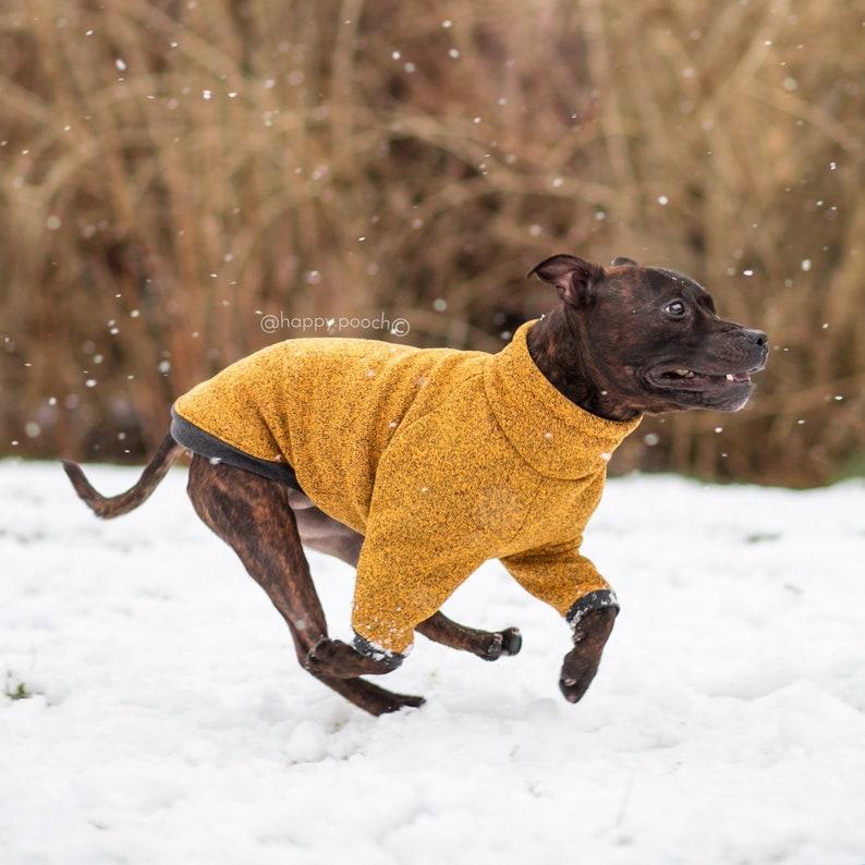 Dog Turtleneck Jacket | Stay at Home Mum