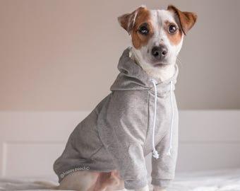 Raglan Dog Hoodie, Dog Clothes, Warm Dog Sweater, Custom Dog Hoodie, Dog Jacket, Sweatshirt Dog Hoodie, Dog Coat