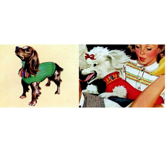 Patron pdf de tejido en aguja sueter para perro mascota 2 | Etsy