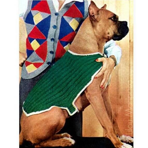 Patron pdf de tejido en aguja sueter para perro mascota | Etsy