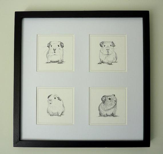 Guinea Pig Print