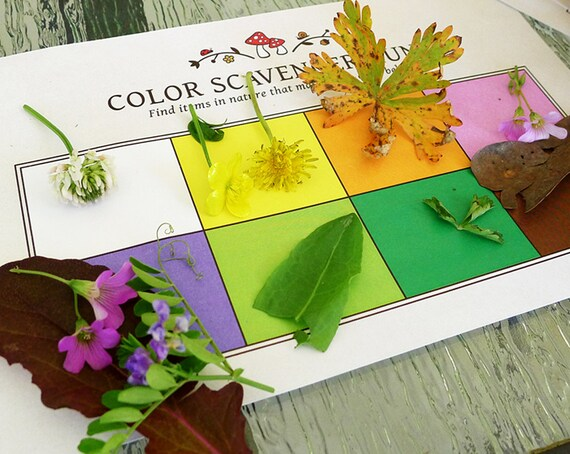 Nature Color Scavenger Hunt Printable Kids Activity Party Etsy