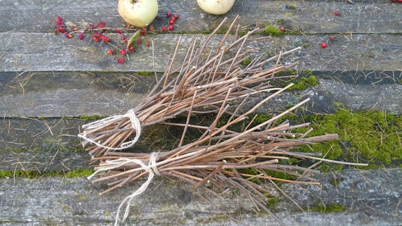 Natural Branches Decor Centerpiece Twigs For Display Vases Florist Supplies Arts Crafts Diy Bouquets Spirea Tree Branches Natural Tree Wood