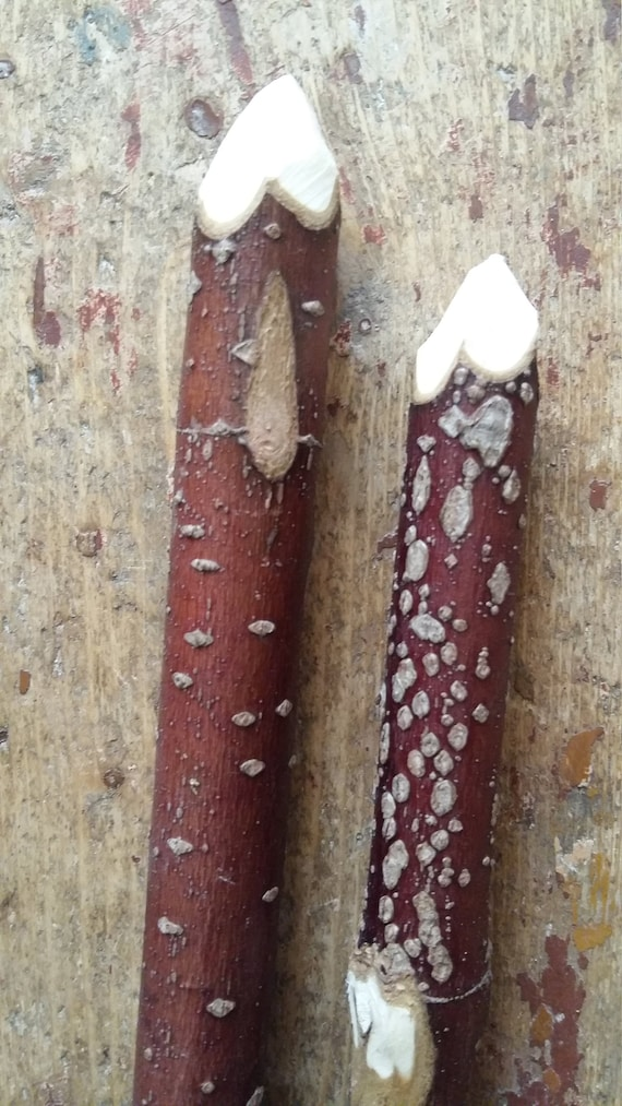 Red Dogwood Wand Supplies Natural Dogwood Tree Branches Twigs Etsy