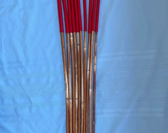 SALES SPECIAL - Set of 10 Classic Dragon Rattan Punishment Canes / School Canes / BDSM Canes ( Imperial Red Handles )  -See specs