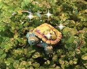 fairy garden turtle, miniature turtle, miniature garden turtle, terrarium turtle, fairy garden accessories