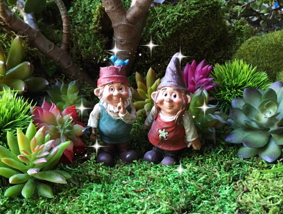 Wonderful Fairy Garden Gnome Couple Miniature Garden Gnome Miniature | Etsy