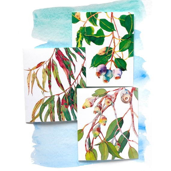 Eucalyptus Greeting Cards Variety Pack Set Of 3 Cards With