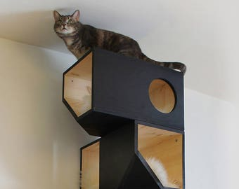 Black Catissa, Modular Cat House