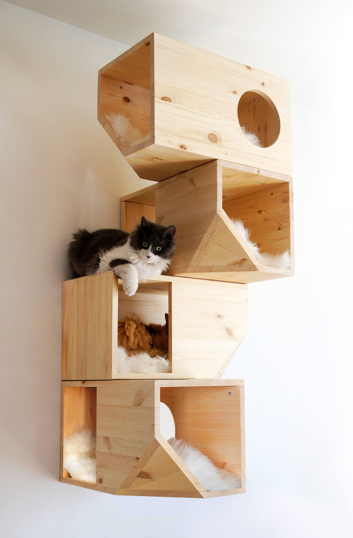 KatzenschloГџ