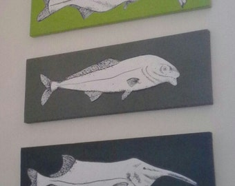 5 Elephant Snout Fish - Inspired by vintage science text books from the 1960s and 70s, my paintings have a retro yet modern feel.