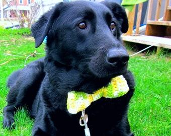 Dog Bowtie Crochet Pattern