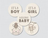 Monkey Baby Shower Cupcak...