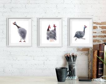 Guinea fowl birds n4. Set of 3 giclee prints A4 size. Nursery decor and bird lover gift idea.