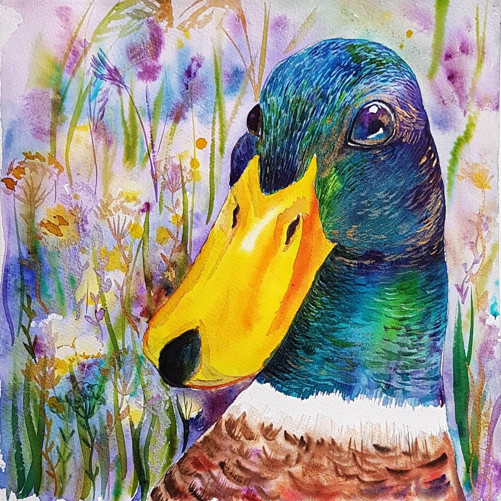 Printable duck watercolor painting mallard duck art Birds | Etsy