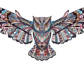 Owl Retro Bird Colourful Iron On Transfer A5