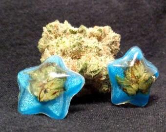 Weed Jewelry-Aqua Star Cannabis Stud Earrings--Weed Earrings-Real Weed Earrings-Gifts for Her-Stoner Gifts-Cannabis Earrings-Cannabis