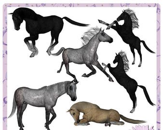 Horses Commercial Use Set 2, colt, filly, mare, stallion, bronco, foal, mustang, pony, steed