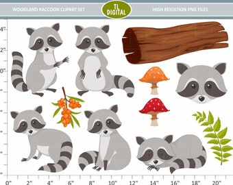 Woodland Raccoon Clipart Set - Animal Clipart - Woodland Clipart - High resolution PNG Files - 11 clipart illustrations