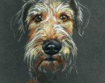 Soft pastel «sketch style1» portrait of your animal (18 X 24 cm) / Portrait pastel sec stylecroquis1» de votre animal (18 X 24 cm)