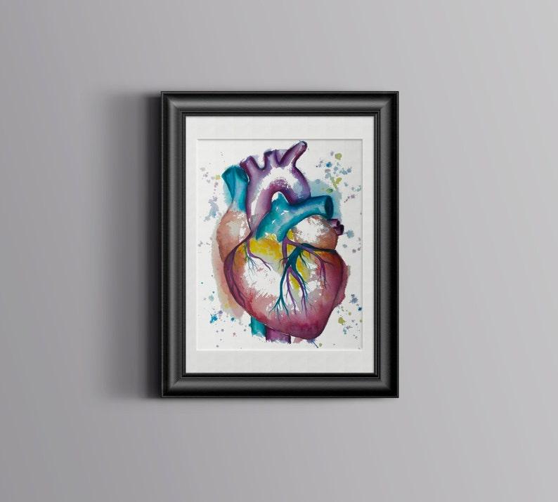 cardiology anatomy Heart watercolor painting-- watercolor print anatomy illustration science art heart print cardiac art