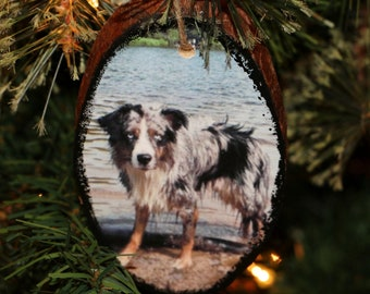 Pet Photo Ornament, Pet Christmas Ornament, Photo Christmas Ornament, Wooden Ornament, Wood Slice Ornament, Rustic Photo Ornament, Dog Cat