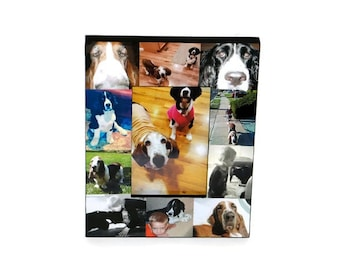 Pet Memorial Collage Picture Frame In Loving Memory Pet Frame Rainbow Bridge Custom Cat Dog Frame Personalized Pet Memorial Photo Frame