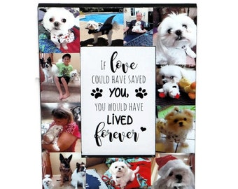 Pet Loss Gifts Dog Loss Frame Pet Frame Pet Memorial Frame Cat Loss Cat Memorial Pet Sympathy Dog Sympathy Gift Loss Of Pet Picture Frames
