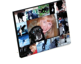 Pet Memorial Collage Pet Frame Personalized Picture In Loving Memory Fur Baby Frame Rainbow Bridge Custom Cat Dog Frame Memorial Photo Frame