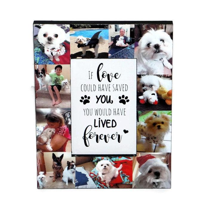 Pet Loss Gifts Dog Loss Frame Pet Frame Pet Memorial Frame Cat Loss ...