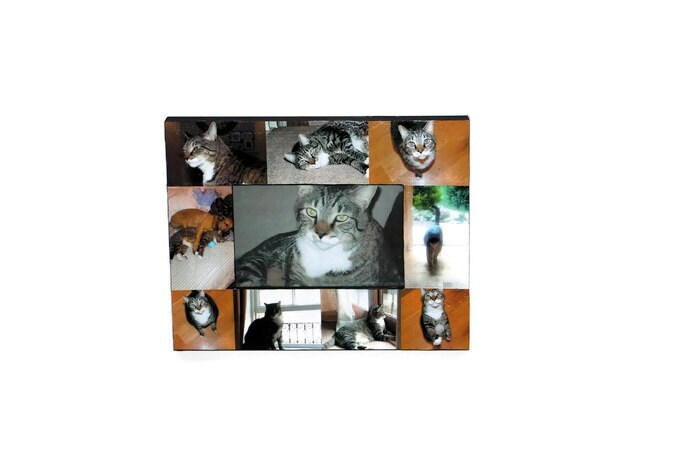 Pet Memorial Collage Picture Frame In Loving Memory Pet Frame ...