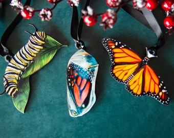 Monarch Collection, Monarch Life Cycle Ornaments, Danaus plexippus, Lepidopterology Ornaments, Biologist gift, Nature lover