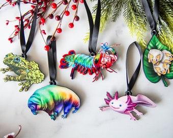 The Weird Stuff Ornament Collection 1, Manti Shrimp Ornament, Axolotl Ornament, Tardigrade Ornament, Mossy Frog, Honduran White Bats