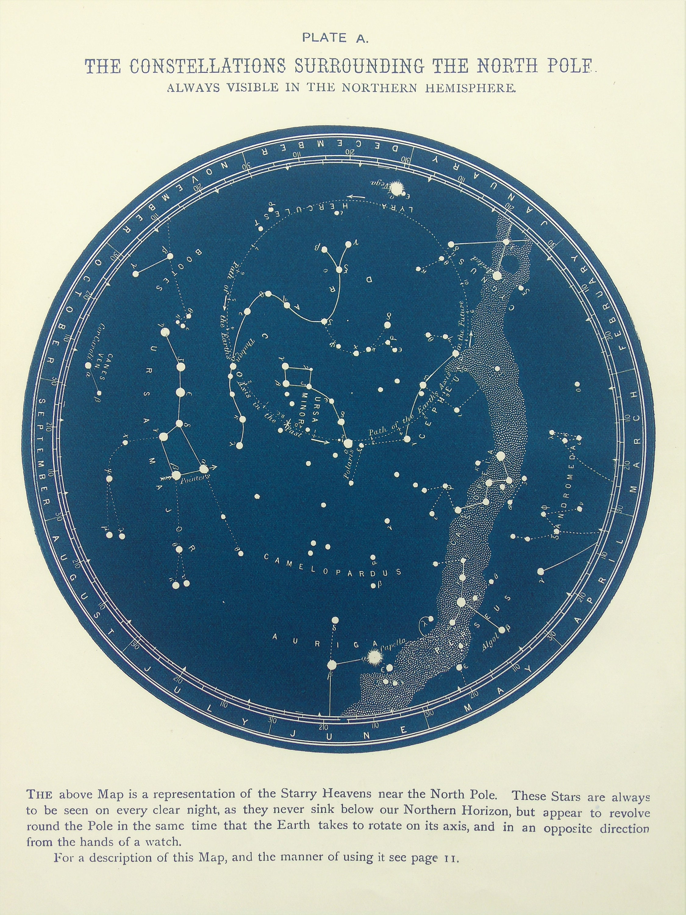 1880s Antique Astronomy Print Blue Black Star Chart Of Etsy