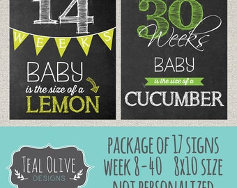 Bi-Weekly Pregnancy Chalkboard Sign - Week 8-40 Package Deal 17 Signs - Weekly Pregnancy Countdown - Baby Size Only - 8x10 INSTANT DOWNLOAD