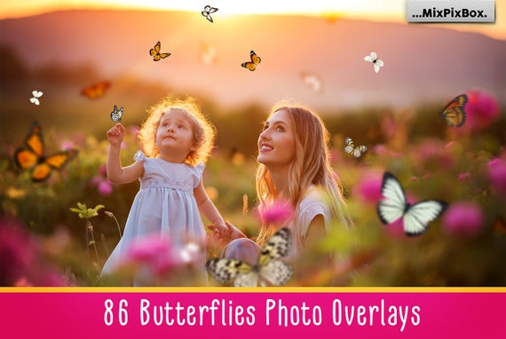 86 Butterflies overlays, PNG, Photoshop overlay, butterfly