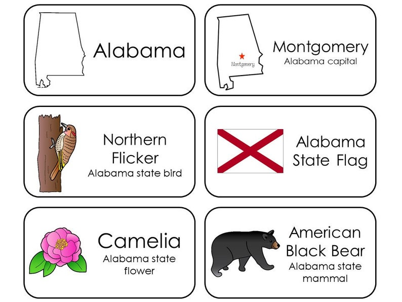 photo regarding 50 States Flash Cards Printable known as 300 Place Symbols Printable Flashcards. Nation, Funds, Flower, Mammal, Flag, and Fowl. All 50 Suggests.