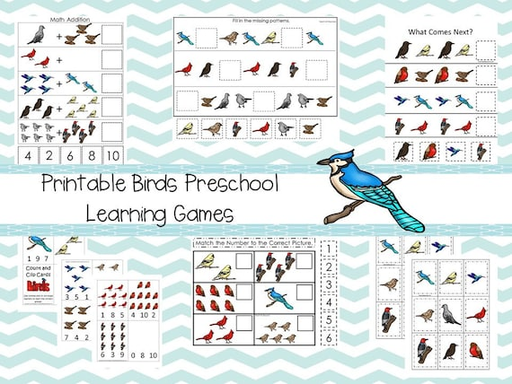 30 Printable Preschool Birds Learning Games Download. Games