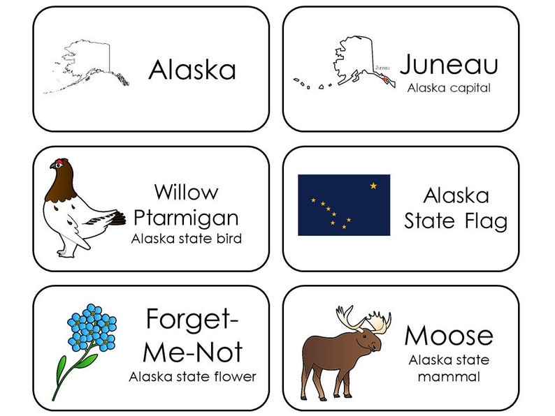 photo regarding 50 States Flash Cards Printable named 300 Place Symbols Printable Flashcards. Place, Money, Flower, Mammal, Flag, and Chook. All 50 Claims.