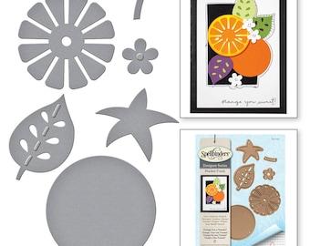 Spellbinders   Shapeabilities Market Fresh by Debi Adams Orange You a Tomato Etched Dies S4-722
